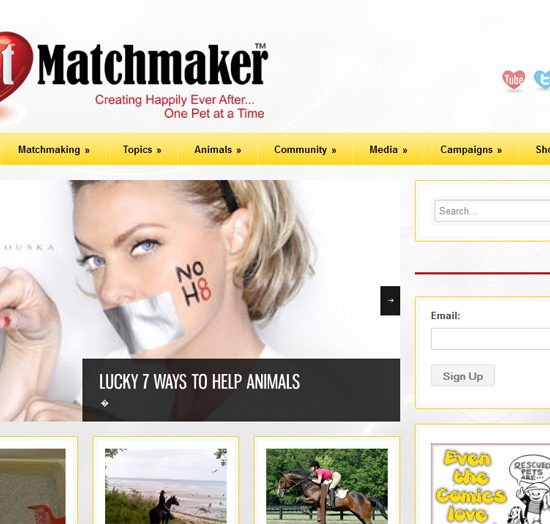 thepetmatchmaker_screen